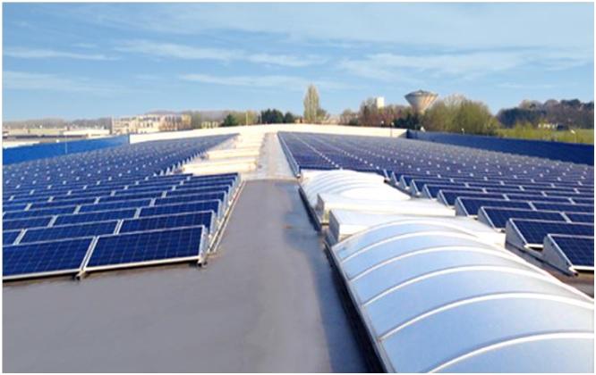 stef paneles solares