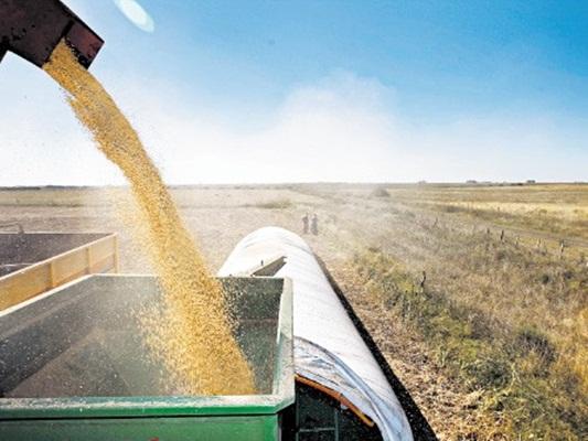 Agrotendencias se centra en la logística como forma de impulsar la competitividad
