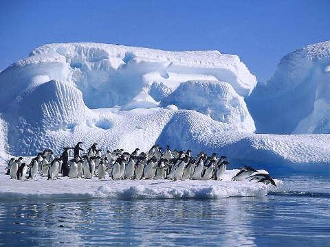 Aumenta el turismo de cruceros en la Antártida