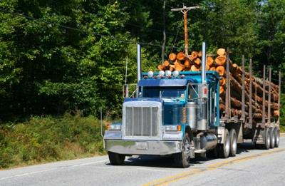 Conductores y combustible, las preocupaciones del transporte por carretera