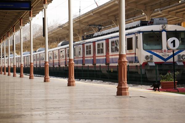 tren-turquia