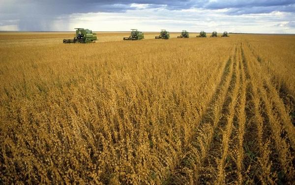 Producción brasileña de grano batirá récords en 2015