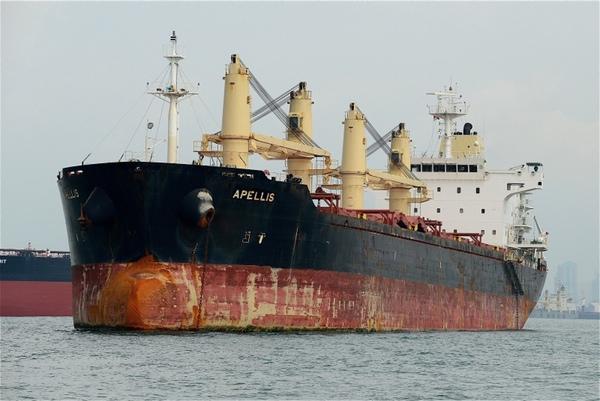 AMSA detiene buque panameno por falta de pago