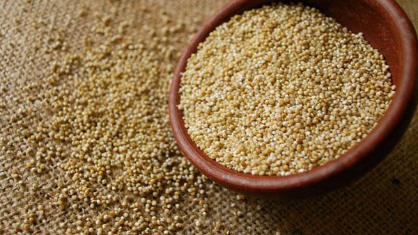 Bolivia reduce sus exportaciones de quinua