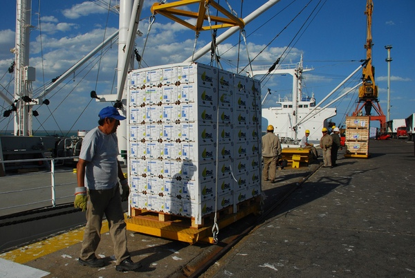 Exportaciones agroalimentarias de Mexico a Japon crecen en primer semestre