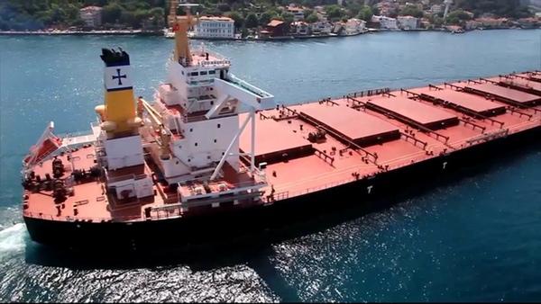 Diana Shipping fleta dos nuevos buques