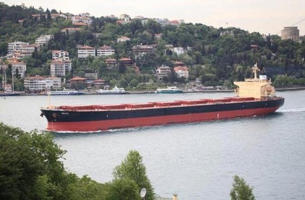Diana Shipping obtiene financiacion para nuevos buques