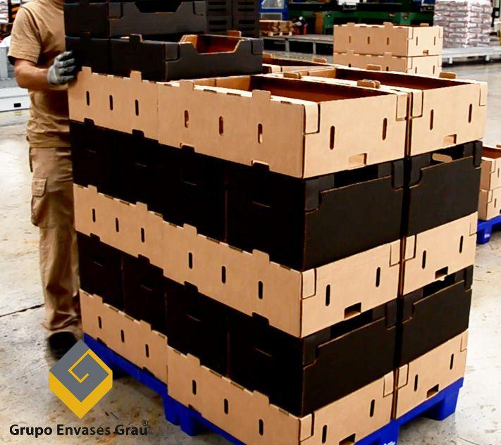 Grupo Envases Grau perfecciona envases de cartón con sistema modular