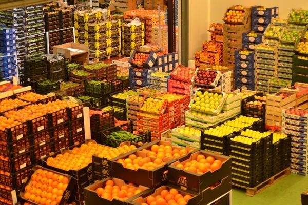 ATFRIE pide eliminación de restricciones al transporte de frutas y verduras