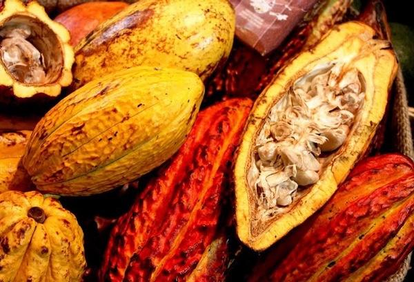 Agroexportaciones peruanas superan los 1.500 millones de dolares