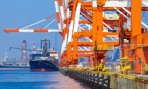 Argentina profundiza relacion comercial con Marruecos y Egipto
