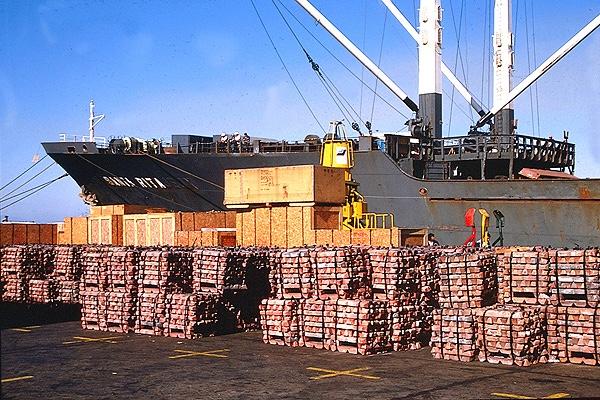 Exportadores argentinos ya pueden cobrar en dolares