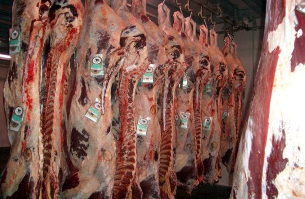 transporte de carne
