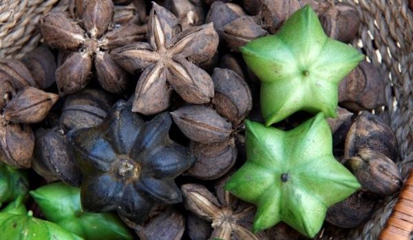 Peru aumenta exportaciones de productos naturales a Corea del Sur