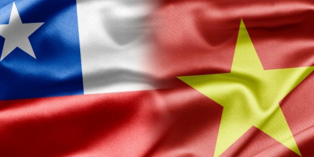 Gobiernos de Chile y Vietnam se reúne para profundizar relaciones económicas