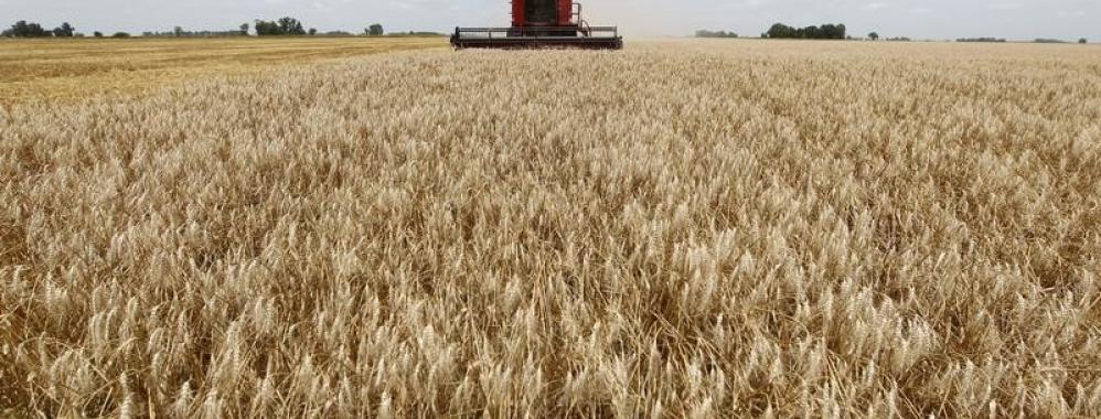 Bolivia supera la peor sequía de su historia y aumenta sus cultivos de cereales