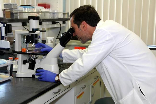 Cuba apuesta por la nanotecnología para modernizar su industria