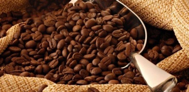El Salvador promueve cambio de mentalidad sobre la cultura del café, reconocida en mercados mundiales