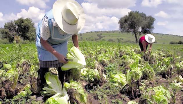 Empresarios piden a Gobierno de Panamá alianza para impulsar economía interna