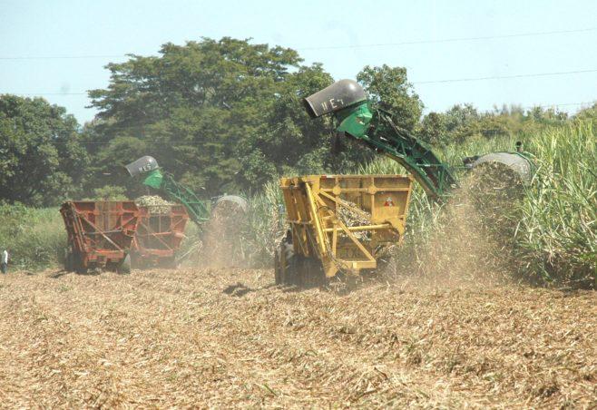 "Nicaragua celebrará por primera vez evento azucarero ""La Semana del Bonsucro"""