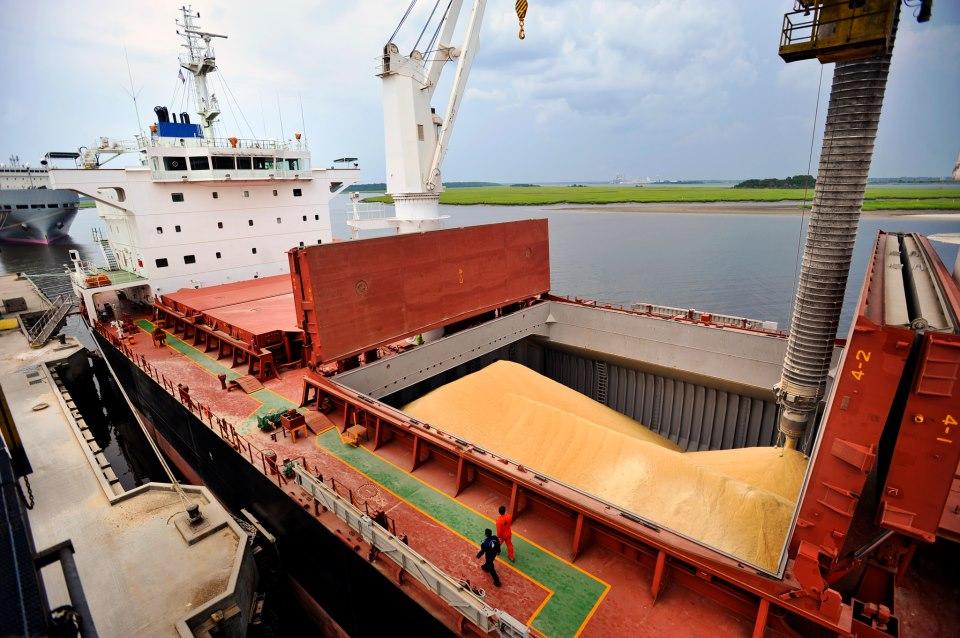 Exportación positiva de granos en Argentina durante 2017
