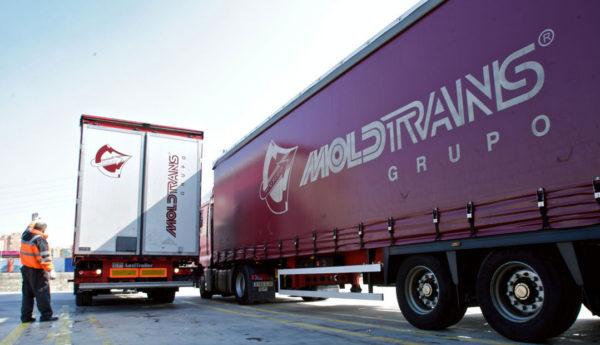 Grupo Moldtrans