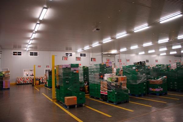 Industria del almacenamiento frigorífico casi alcanza la total ocupación en segundo trimestre