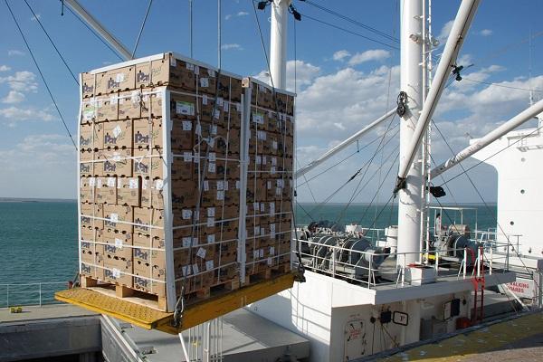 Puerto de Cartagena incrementa un 60% el tráfico de frutas y hortalizas