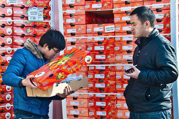 cerezas chilenas en china