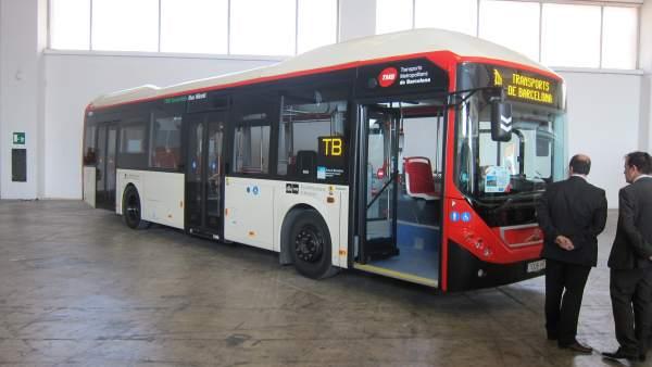 Buses Barcelona