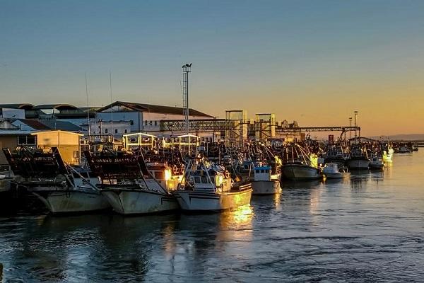 Puerto de Huelva instalará depuradoras de moluscos