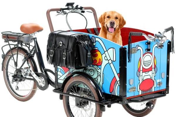 The Bark triciclo eléctrico