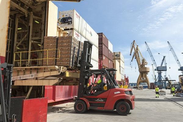 Puerto de Tarragona se establece como entrada para tráfico de fruta tropical