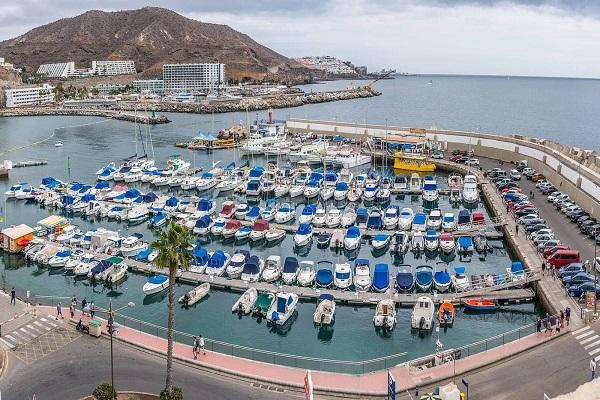 Puertos del Estado analiza cómo mejorar la actividad en puertos canarios