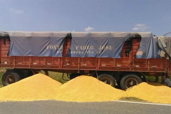 cargas graneleros argentina
