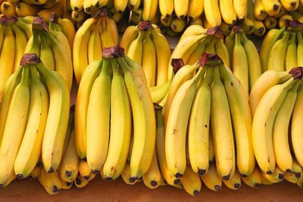 bananos ecuador argentina