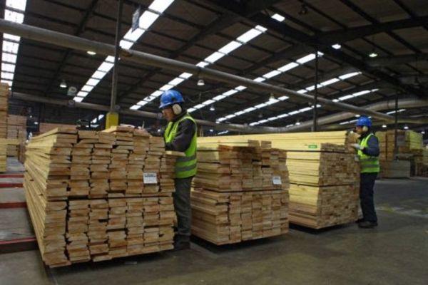 chile exportaciones forestales