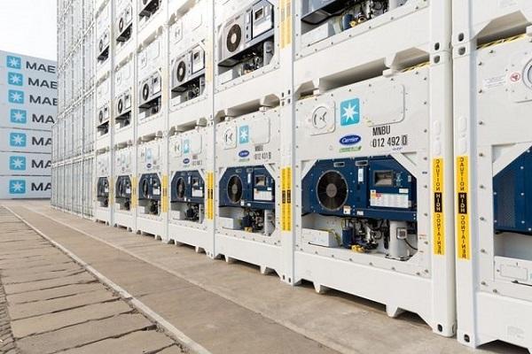 Maersk podría mejorar sus servicios logísticos a temperatura controlada