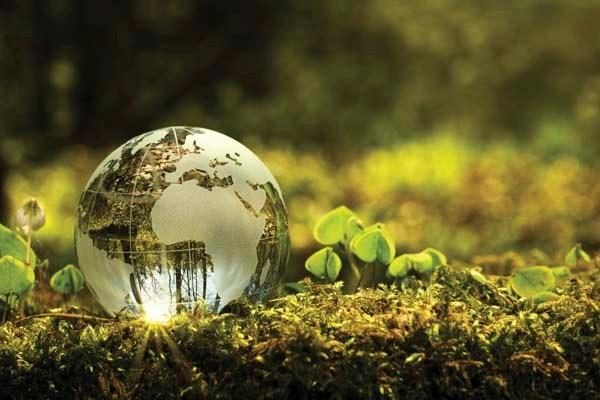 omi desarrollo sustentable