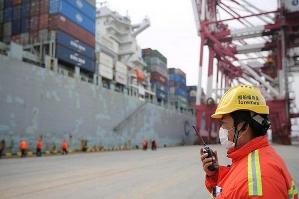 MSC añade un servicio de carga flexible para almacenaje de contenedores