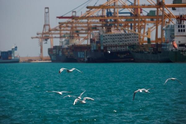 Puerto de Valencia conmemora el Día Mundial del Medio Ambiente