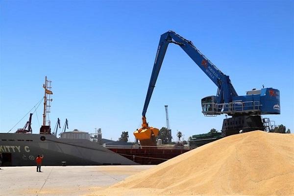 El puerto de Sevilla añade una grúa hidráulica para aumentar la rapidez