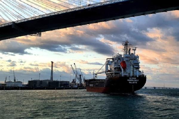 La Autoridad Portuaria de Cádiz aumenta el tráfico un 15,4% hasta junio