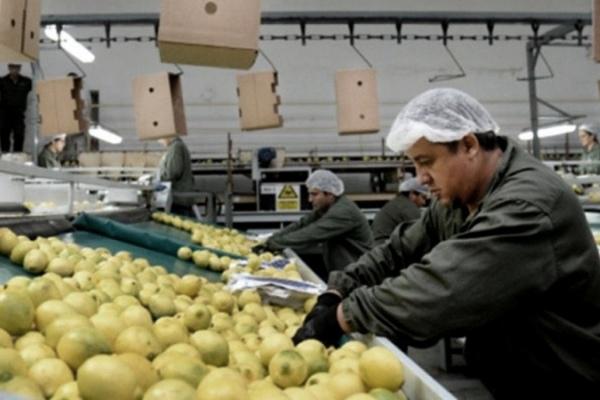 limones argentina china