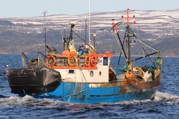 pesca extractiva chile