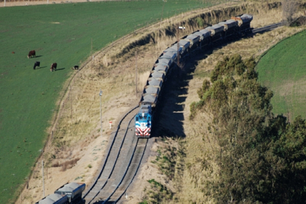ferrocarril vaca muerta