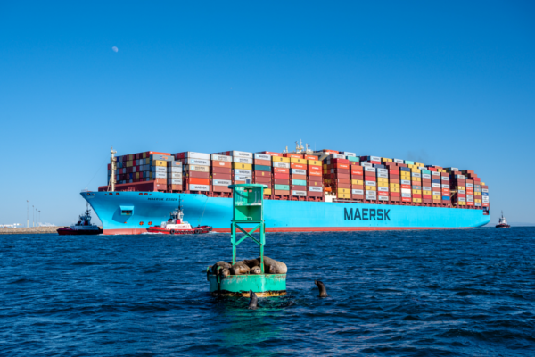 maersk será distribuidor de vacunas