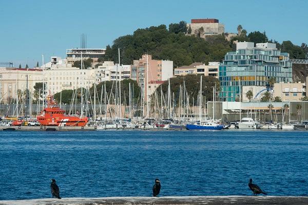 El Puerto de Cartagena se compromete a mejorar su sostenibilidad