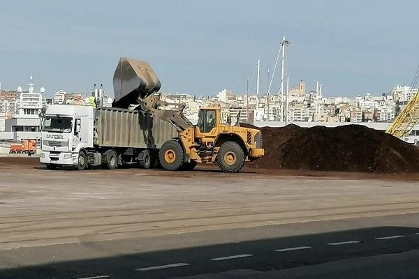 El Puerto de Tarragona libera sus muelles de astilla de madera