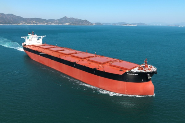 puerto granelero brasil